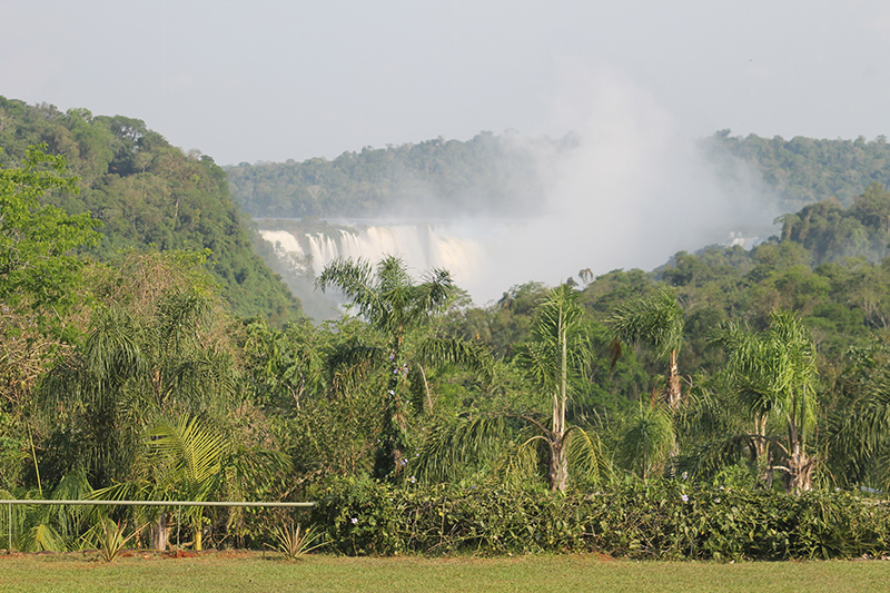 Avances de LAC -- Argentina Forest and Iguazu Falls in the Provincia of Misiones