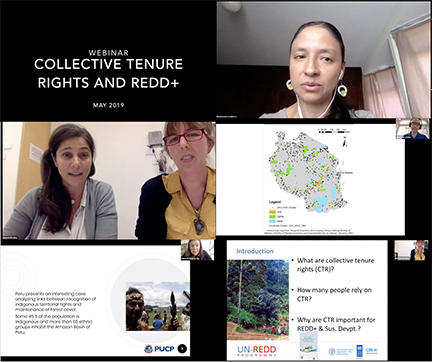 Collage Images Webinar Collective Tenure Rights Light