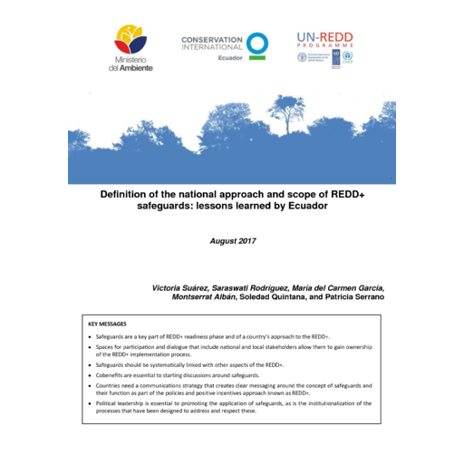 Definition of the national approach and scope of REDD+ safeguards: lessons  learned by Ecuador - UN-REDD Programme Collaborative Online Workspace