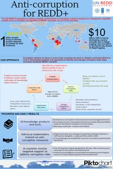 Anti Corruption for REDD Infographic