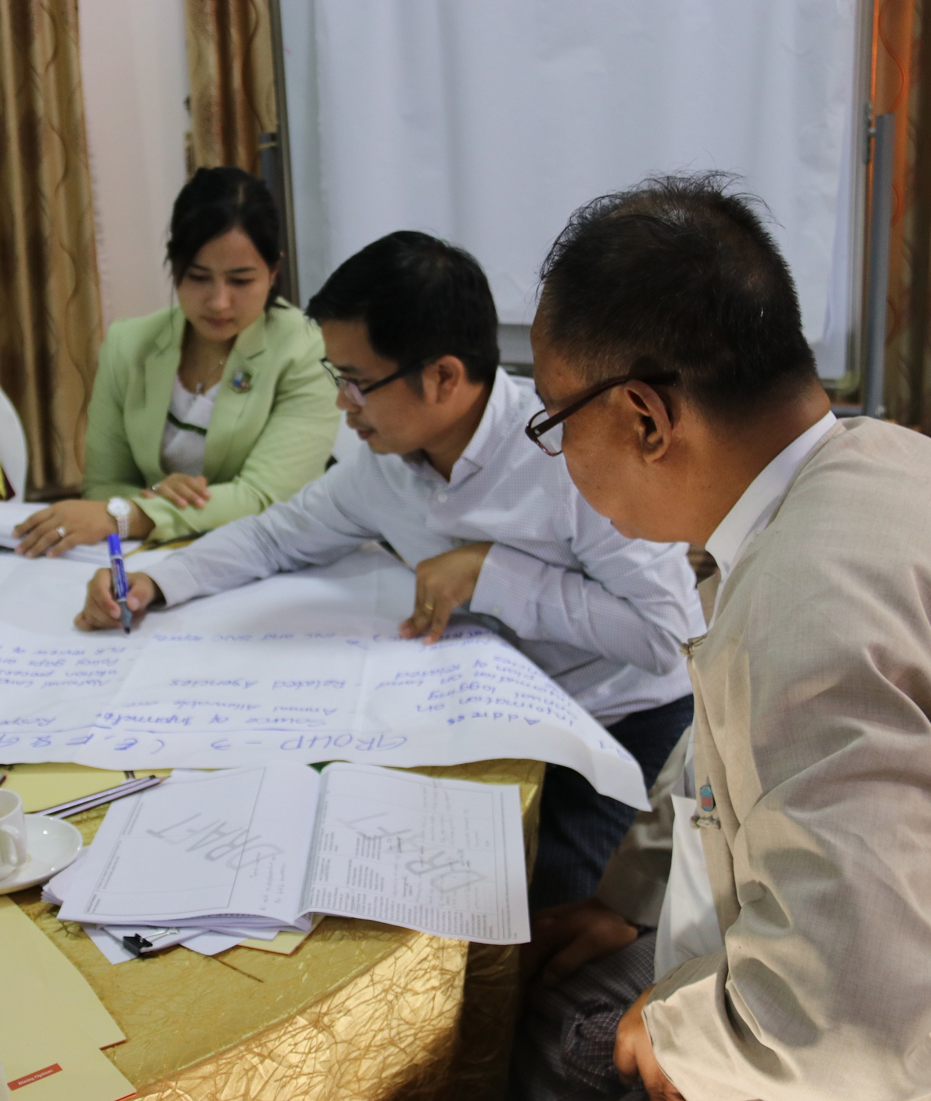 Myanmar SIS Information Needs Workshop discussion group