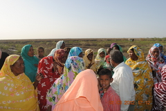 Goli newly established women community forest